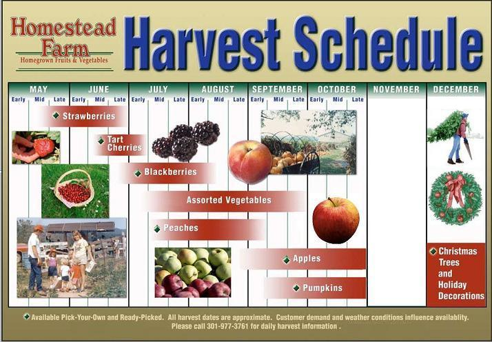Harvest Schedule Image